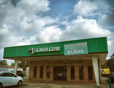 Cash Cow company image